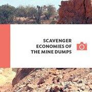 ScavengerEconomies_180x256