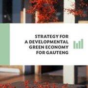 StrategyForGreenEconomy_180x256